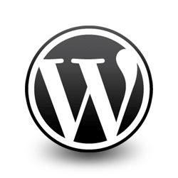 wordpress27