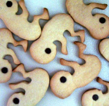 galletas-feto-2