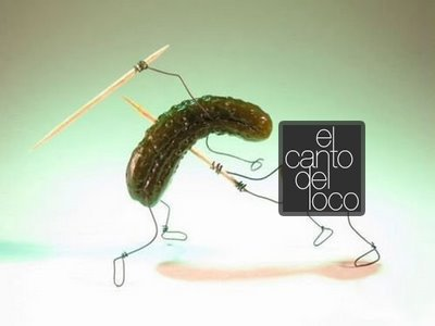 pepinillo-vs-elcantodelloco